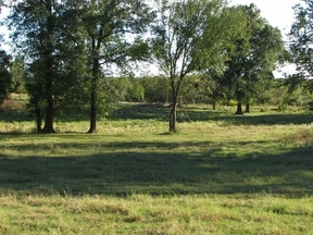 Lots And Land Sold: 3968 Iris Meadows Rd