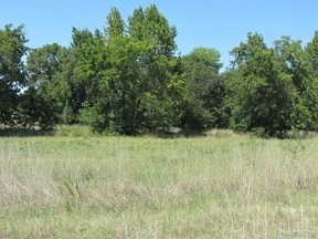 Lots And Land Sold: 1100 NE Lincoln