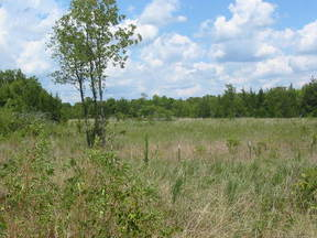 Lots And Land Sold: N 4350 Rd