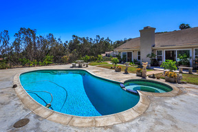 Residential Recently Closed: 2087 Citrus Glen Circle