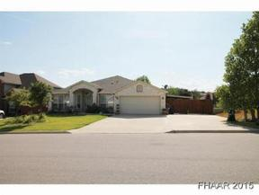 Residential Recently Sold: 709 Tundra Drive