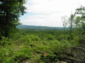 Lots And Land Sold: Southview Lot 53