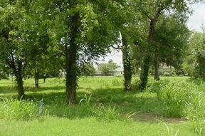 Lots And Land Sold: 155 KONAHUANUI LANE