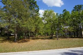Lots And Land Active: 3295 N. Spyglass Village Path
