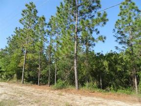 Lots And Land Active: 6229 W. Pine Ridge Blvd