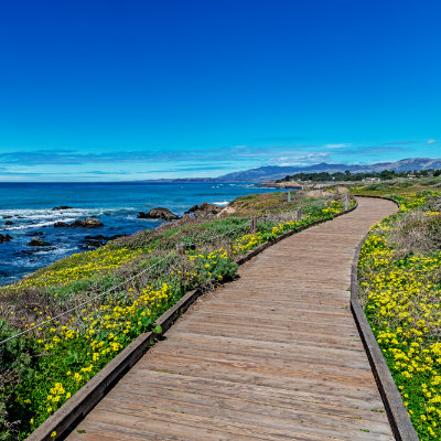 Homes for Sale in Cambria, CA