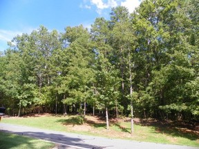 Lots and Land Active: 381 Shamrock Rd.