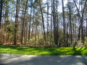 Lots and Land For Sale: 181 Heron Bay Dr.