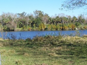 Lots And Land Sold: 19101 River Rd.