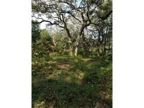 Umatilla FL Lots And Land Active: $8,500