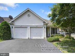 Residential Active: 41 Honeyflower Drive