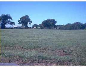 Lots And Land Sold: 121D