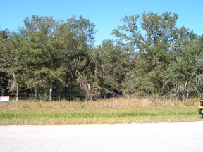 Lots And Land Sold: 1372 Morgan Grice Rd