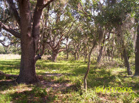 Lots And Land Sold: 2975 Clifton Bryan Road