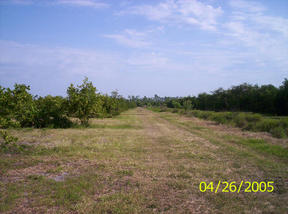 Lots And Land Sold: NW Henry Barrow Ave