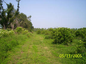 Lots And Land Sold: Old Bradenton Rd.