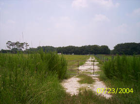 Lots And Land Sold: 10 Acres Vacant Land