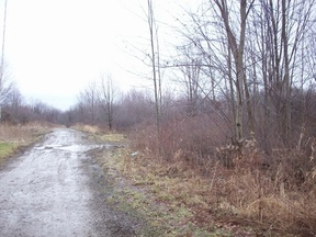 Lots And Land Sold: Four Mile Run Rd  Lot #11
