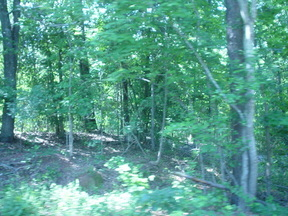 Lots And Land Sold: 1 Log Cabin Lane