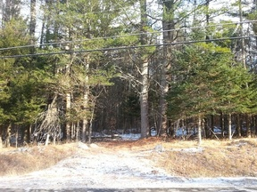 Lots And Land Sold: 1159 Roxbury Notch Rd (#1695)