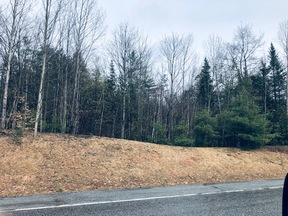 Lots and Land Under Contract: Lot 42 Route 17 Roxbury Road