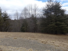 Lots And Land Just Reduced: TBD Laurel Mountain Ln.