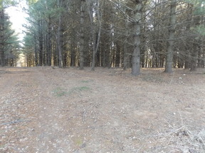 Lots And Land Just Reduced: TBD Rainbow Ridge Trl.