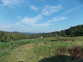 Lots and Land For Sale: TBD Danville Pike