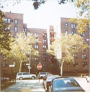 Residential Sold: 84-25 #6I Elmhurst Ave