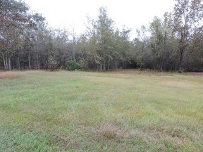Lots And Land Sold: 0000 Bluff Road