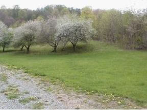 Lots And Land Sold: Roan Springs