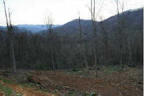 Lots And Land Sold: Roan Springs Road