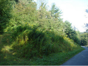 Lots And Land Sold: Tbd Maltba Road