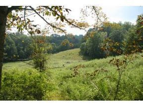 Lots And Land Under Contract: TBD Buck Mountain Road