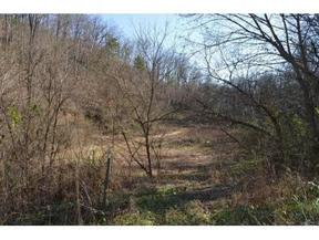 Lots And Land For Sale: TBD Minton Hollow