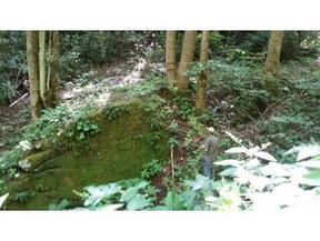 Lots and Land Active: TBD Byrd Creek Rd
