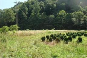 Lots And Land For Sale: Tbd US 19e Highway