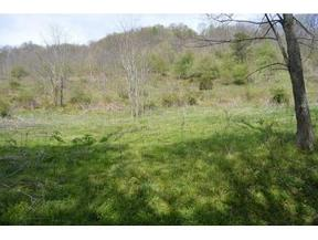 Lots And Land For Sale: TBD Sugar Hollow Road