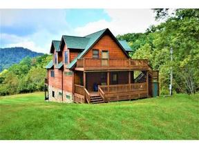 Roan Mountain TN Residential For Sale: $995,000