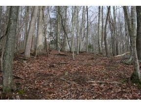Lots And Land Active: Tbd Honeycutt Road