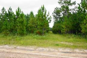Lots And Land Sold: 301 Elmer Thrift Rd Tract 3
