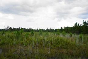 Lots and Land Active: 301 Elmer Thrift Rd Tract 2