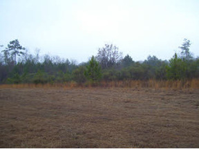 Lots And Land Sold: Thigpen Road