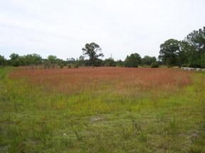 Lots And Land Sold: Washington Ave E