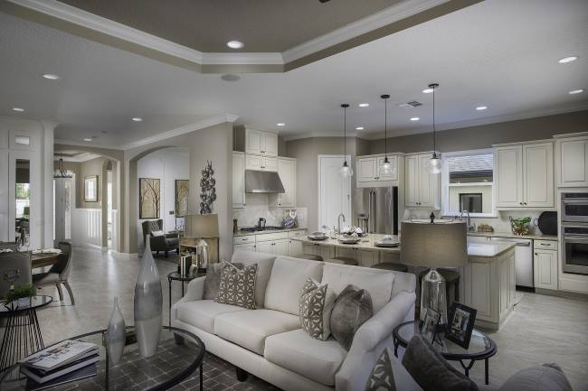 Interior Family Room Highland Ranch