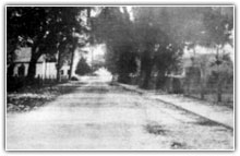 History of Bluffton 1