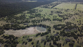 Lots and Land Sold: 240 Acres near FM RD 919
