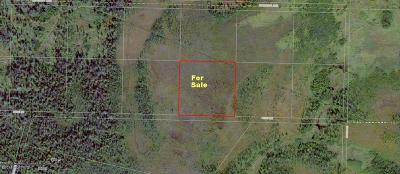 Anchor Point Residential Lots & Land For Sale: Tr 46 Fern Lane