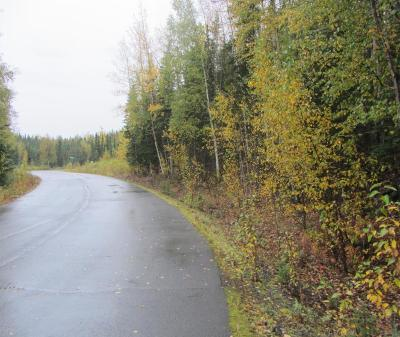 Residential Lots & Land For Sale: 38063 Lakewood Road