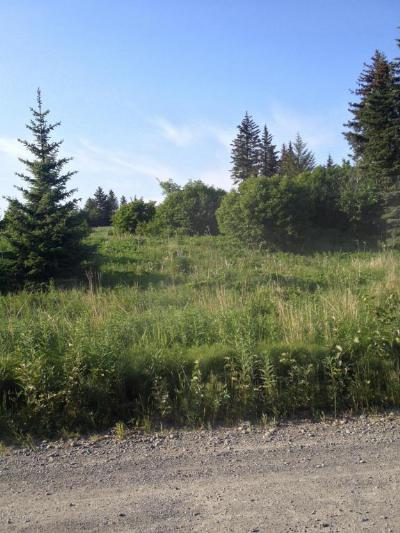 Anchor Point Residential Lots & Land For Sale: 31950 Sterling Highway